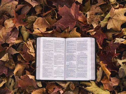 10 Bible Verses that Will Lift Your Spirit
